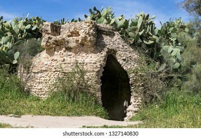 closeup of a byzantine era cistern in the western negev in israel surrounded by sabra cactus, wildflowers and grasses