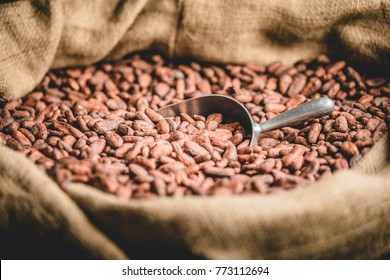 Close-up of Canvas bag with Imported roasted cacao beans