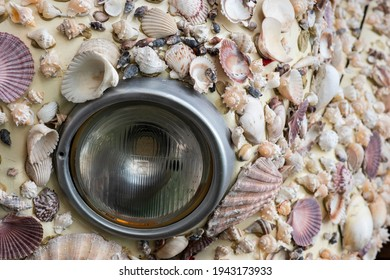 Close-up of a car headlight in the middle of sea seashells of various shapes and colors. Modern graphic art concept