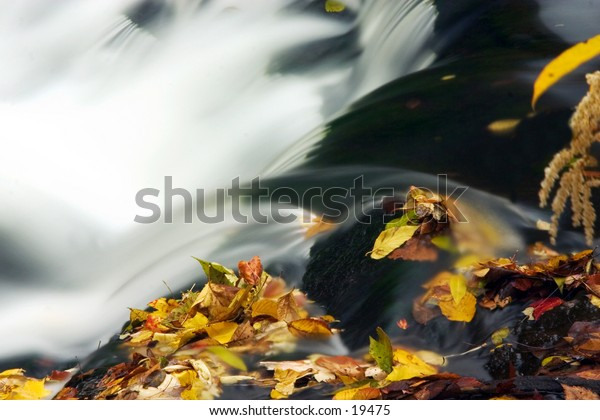 Closeup of cascade with autumn leaves