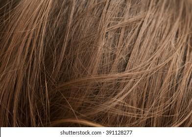 Closeup of chestnut natural hair texture