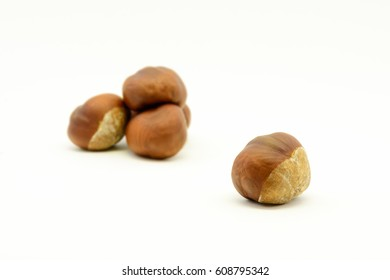 Closeup chestnuts isolated on white background. Fresh autumn chestnut. Sweet natural fruit the chestnut tree. Sign of autumn. Autumn decoration from chestnuts.