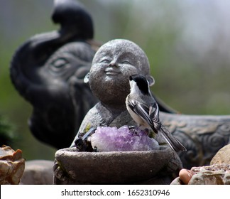 Closeup of a Chickadee standing on top of a purple Amethyst crystal which is sitting inside of a bowl being held by a young Buddha statue, with a elephant statue in the background.
