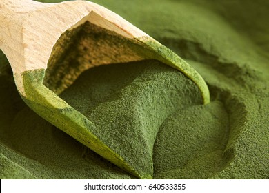 Closeup of chlorella algae powder with wooden scoop