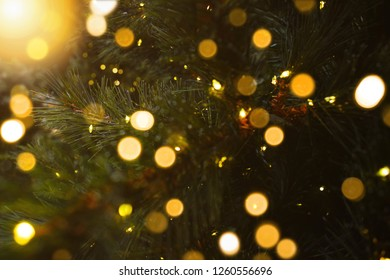 Tiny Christmas Lights.Tiny Christmas Lights Stock Photos Images Photography Shutterstock