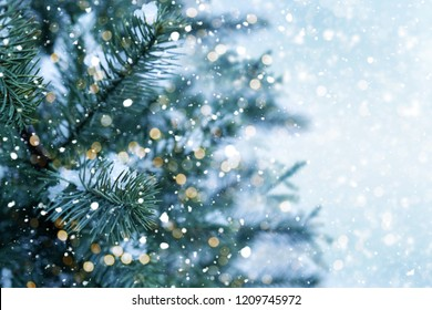 Closeup of Christmas tree with light, snow flake. Christmas and New Year holiday background. vintage color tone.