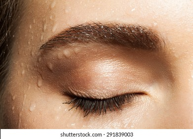 Close-up of closed eye with long eyelashes and eyebrows brown with water drops