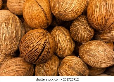Closeup of coconuts
