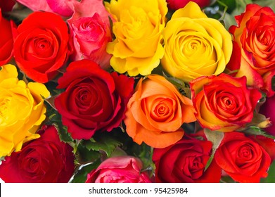 close-up of colorful assorted roses on white background