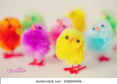 Closeup of Colorful Easter Chicks