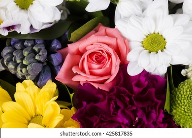 closeup of colorful flowers, pink roses, camomiles