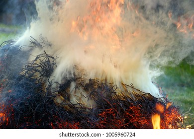 Close-up at combustion of a big pile of dried wood and straw. Opaque smoke over a heap, forest and grass in background.