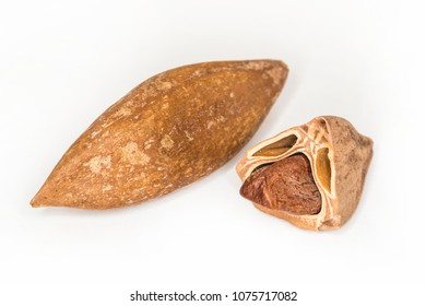 Closeup of cracked pili nuts on white background