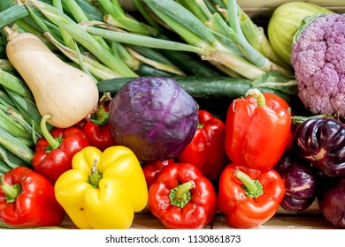 Closeup and crop variety of vegetable background and wallpaper.