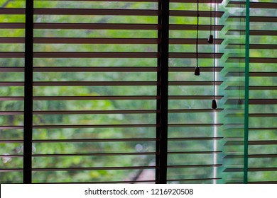 Closeup curtain, Louvers , shade, blind or shutters background open see the green color of trees blurred.