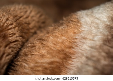 Closeup of curves and texture in a thick blanket.