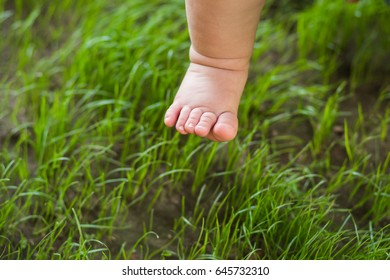 Closeup of cute tiny legs of  one year old white baby isolated on green grass background. Little boy or girl trying to make first steps outdoors in sunny summer or spring park. Horizontal color image