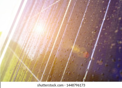 Close-up of dark blue solar panel with water drops and reflection of green trees. On the background of grass and blue sky. Image with differential focus. Toned with sunshine.