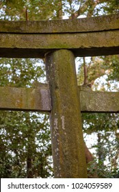 Close-up detail of an old mossy concrete Torii gate leading to a Shinto shrine in the forest. Nobeoka, Miyazaki, Kyushu, Japan. Vertical orientation. Travel and religious architecture concept.
