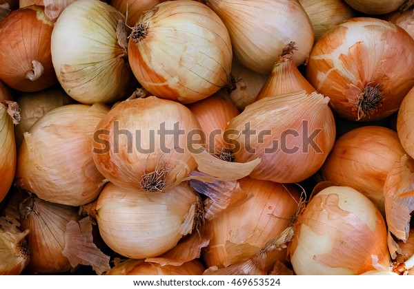 Closeup detail of organic yellow onions at an outdoor farmers market in Seattle.