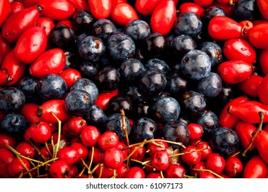 closeup of the different kinds of berries studio shot