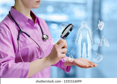 A closeup of a doctor looking at the human model medical structure with internal organs around through magnifier. The concept of internal organs treatment.
