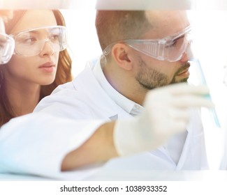 closeup of a doctor-pharmacists and colleagues working in the la