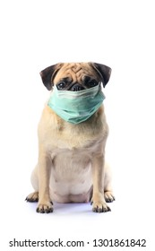Dog Face Mask Images, Stock Photos & Vectors | Shutterstock