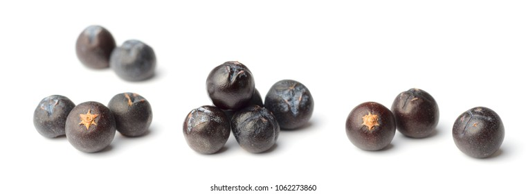 closeup of dried juniper berries isolated on white