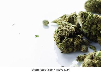 Closeup of dried marijuana bud on a white table
