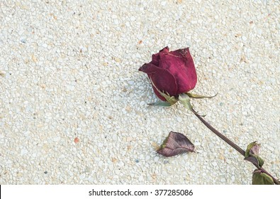Closeup dried red rose on blurred stone floor texture background