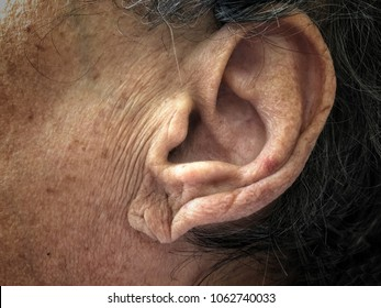 closeup ear of a senior person