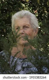 close-up of the face of an older woman with short gray hair. The old woman is behind some plants . The adult woman is alone and she is happy looking at the front. She is wearing a black and white shir