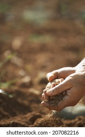 Closeup of farmer's hands holding soil on fertile land in farm