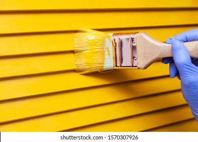 Closeup female hand in purple rubber glove with paintbrush painting natural wooden door with orange paint. Concept colored bright creative design interior for young family. How to Paint Wooden Surface