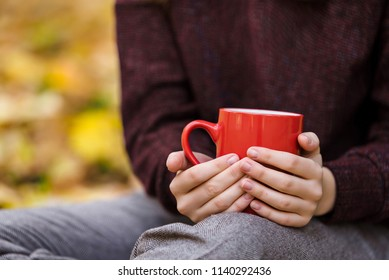 Closeup of female hands holding big red cup on the autumn park b