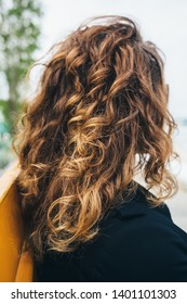 Close-up of female's curly hair. Rear view young woman with wavy hair sitting on bench on sunny day.