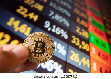 closeup fingers hold the bitcoin coin in front of stock market screen