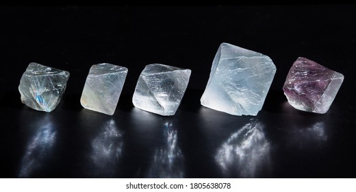 Close-up of five octahedral translucent raw fluorite mineral stones with nice reflection. Macro shooting of specimens of natural minerals - fluorite crystals on dark background.