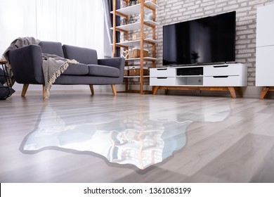 Close-up Of Flooded Floor In The Living Room From Water Leak