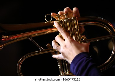 Close-up of a flugelhorn in female hands on a black background.Professional fingers on the valves of a beautiful shiny musical instrument.The concept of creativity