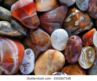 Closeup Focus Stacked Image of Polished Stones to Include Agates, Beach Agates and Petrified Wood