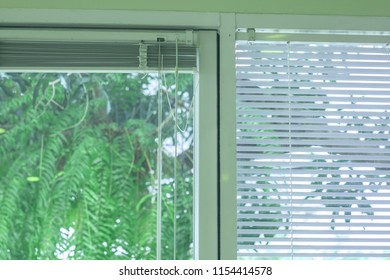 Closeup folded jalousie,white Louvers ,Venetian curtain and glass window. Blur green tree background.