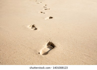 Close-up Of Footprints In The Sand On The Tropical Beach