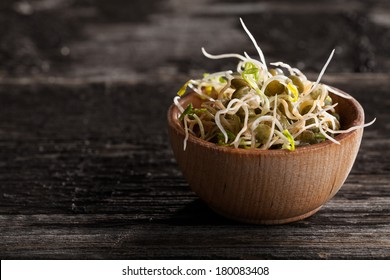 Close-up of French Lentils Sprouts in a Wooden bowl