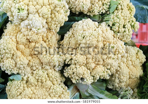 Close-up of fresh cauliflower to sale in the market