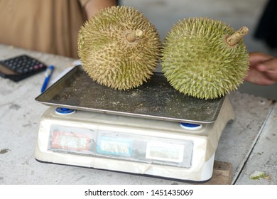 Closeup fresh exotic tropical fruits Durian on weighing scale for sale at an outdoor market. Organic fruits on street market. Fruit season. Durian is king of fruit is famous Asian fruit.