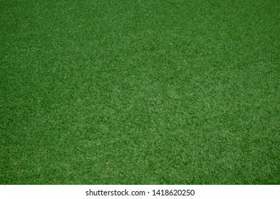 closeup fresh green grass texture pattern background