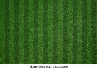 closeup fresh green grass texture pattern background for football field