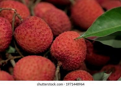 Closeup fresh Lychee fruit (Litchi chinensis Sonn), Thai fruit Linchee  background. - Shutterstock ID 1971448964